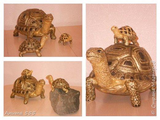Вот такая семейка черепашат получилась)) фото 1