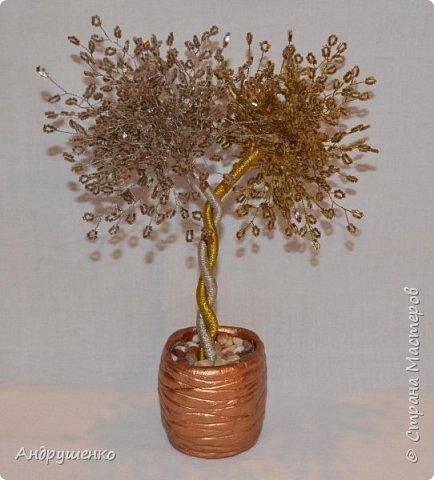 """Доброго времени суток. Вот такое деревце у меня сплелось """"золото и серебро"""". Хочу показать Вам как легко, быстро и дешево можно сделать подставочку для дерева. Не знаю, может кто-то уже так делает. фото 1"""