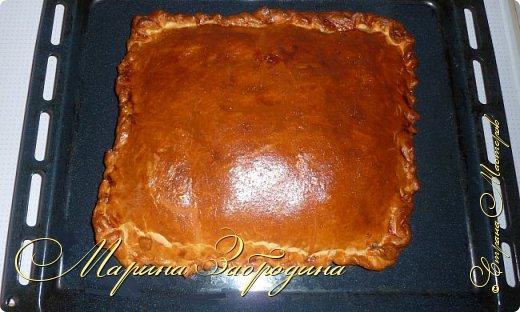 Кулинария Мастер-класс Рецепт кулинарный Пирог с мясной начинкой Продукты пищевые фото 11