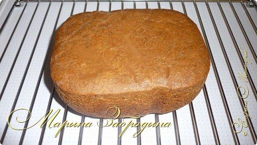 Кулинария Мастер-класс Рецепт кулинарный Ржаной обдирной хлеб Тесто для выпечки фото 15