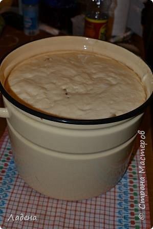 Кулинария Мастер-класс Пасха Рецепт кулинарный Куличи на сметане Продукты пищевые Тесто для выпечки фото 17