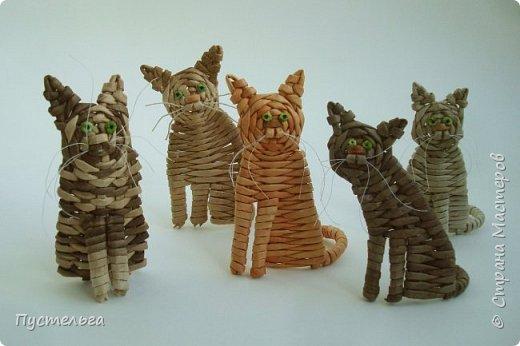 Котики из 15-ти трубочек! Любого окраса и породы!