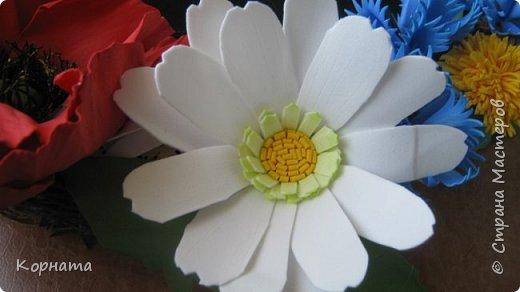 Добрый вечер, дорогие друзья и уважаемые мастера! Я продолжаю играться с фомом, пробую всякие цветочки, но не все формы нравятся.А еще я поняла, что мне больше нравится работать с ним руками, а не утюгом, ручные цветы получаются более нежные и естественные.Выношу на ваше обозрение. Броши-заколки, делала для внучек к 8 Марта. Их делала руками. фото 27