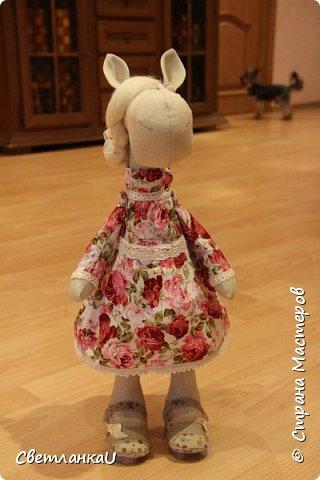 Лошадка Роза, день рождения 22.04.2015г, рост 50 см фото 4