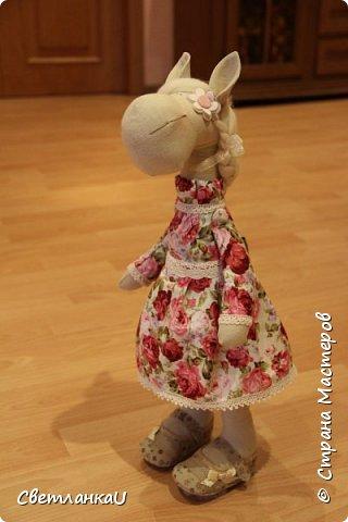 Лошадка Роза, день рождения 22.04.2015г, рост 50 см фото 7