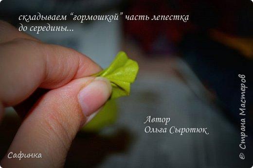"""Приветик всем,мои дорогие!!! И снова с вами я, Ольга Сыротюк... По просьбе одной читательницы моих МК...мы вместе с вами будем создавать очаровательные бутоны пиона сорта """"Ballerina""""  Согласно учению Фэн-Шуй, цветок пиона является символом удачи и любви... И так начнем...готовы творить вместе со мной? Значит за дело,достаем волшебный материал, и хорошее настроение.... фото 21"""