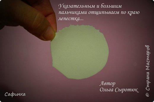 """Приветик всем,мои дорогие!!! И снова с вами я, Ольга Сыротюк... По просьбе одной читательницы моих МК...мы вместе с вами будем создавать очаровательные бутоны пиона сорта """"Ballerina""""  Согласно учению Фэн-Шуй, цветок пиона является символом удачи и любви... И так начнем...готовы творить вместе со мной? Значит за дело,достаем волшебный материал, и хорошее настроение.... фото 6"""