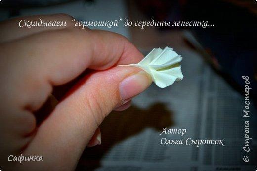 """Приветик всем,мои дорогие!!! И снова с вами я, Ольга Сыротюк... По просьбе одной читательницы моих МК...мы вместе с вами будем создавать очаровательные бутоны пиона сорта """"Ballerina""""  Согласно учению Фэн-Шуй, цветок пиона является символом удачи и любви... И так начнем...готовы творить вместе со мной? Значит за дело,достаем волшебный материал, и хорошее настроение.... фото 11"""