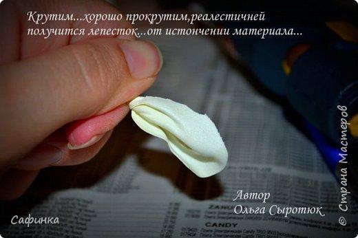 """Приветик всем,мои дорогие!!! И снова с вами я, Ольга Сыротюк... По просьбе одной читательницы моих МК...мы вместе с вами будем создавать очаровательные бутоны пиона сорта """"Ballerina""""  Согласно учению Фэн-Шуй, цветок пиона является символом удачи и любви... И так начнем...готовы творить вместе со мной? Значит за дело,достаем волшебный материал, и хорошее настроение.... фото 13"""