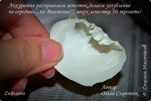 """Приветик всем,мои дорогие!!! И снова с вами я, Ольга Сыротюк... По просьбе одной читательницы моих МК...мы вместе с вами будем создавать очаровательные бутоны пиона сорта """"Ballerina""""  Согласно учению Фэн-Шуй, цветок пиона является символом удачи и любви... И так начнем...готовы творить вместе со мной? Значит за дело,достаем волшебный материал, и хорошее настроение.... фото 14"""
