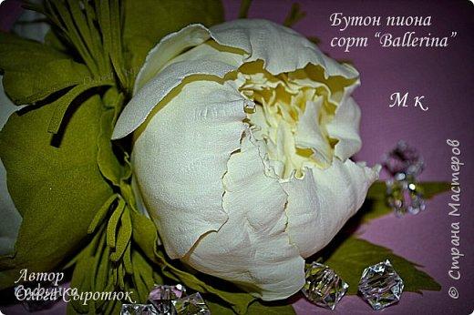 """Приветик всем,мои дорогие!!! И снова с вами я, Ольга Сыротюк... По просьбе одной читательницы моих МК...мы вместе с вами будем создавать очаровательные бутоны пиона сорта """"Ballerina""""  Согласно учению Фэн-Шуй, цветок пиона является символом удачи и любви... И так начнем...готовы творить вместе со мной? Значит за дело,достаем волшебный материал, и хорошее настроение.... фото 40"""