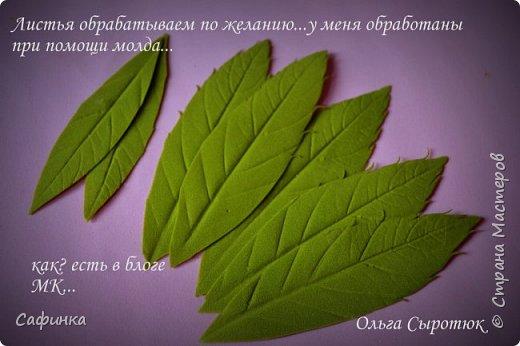 """Приветик всем,мои дорогие!!! И снова с вами я, Ольга Сыротюк... По просьбе одной читательницы моих МК...мы вместе с вами будем создавать очаровательные бутоны пиона сорта """"Ballerina""""  Согласно учению Фэн-Шуй, цветок пиона является символом удачи и любви... И так начнем...готовы творить вместе со мной? Значит за дело,достаем волшебный материал, и хорошее настроение.... фото 24"""
