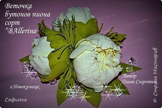 """Приветик всем,мои дорогие!!! И снова с вами я, Ольга Сыротюк... По просьбе одной читательницы моих МК...мы вместе с вами будем создавать очаровательные бутоны пиона сорта """"Ballerina""""  Согласно учению Фэн-Шуй, цветок пиона является символом удачи и любви... И так начнем...готовы творить вместе со мной? Значит за дело,достаем волшебный материал, и хорошее настроение.... фото 1"""
