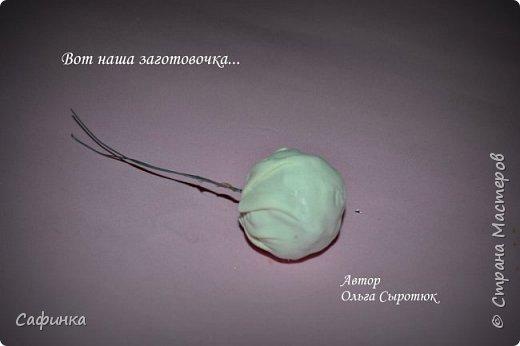 """Приветик всем,мои дорогие!!! И снова с вами я, Ольга Сыротюк... По просьбе одной читательницы моих МК...мы вместе с вами будем создавать очаровательные бутоны пиона сорта """"Ballerina""""  Согласно учению Фэн-Шуй, цветок пиона является символом удачи и любви... И так начнем...готовы творить вместе со мной? Значит за дело,достаем волшебный материал, и хорошее настроение.... фото 31"""