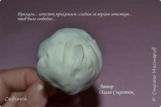"""Приветик всем,мои дорогие!!! И снова с вами я, Ольга Сыротюк... По просьбе одной читательницы моих МК...мы вместе с вами будем создавать очаровательные бутоны пиона сорта """"Ballerina""""  Согласно учению Фэн-Шуй, цветок пиона является символом удачи и любви... И так начнем...готовы творить вместе со мной? Значит за дело,достаем волшебный материал, и хорошее настроение.... фото 32"""