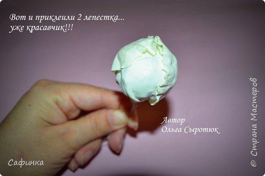 """Приветик всем,мои дорогие!!! И снова с вами я, Ольга Сыротюк... По просьбе одной читательницы моих МК...мы вместе с вами будем создавать очаровательные бутоны пиона сорта """"Ballerina""""  Согласно учению Фэн-Шуй, цветок пиона является символом удачи и любви... И так начнем...готовы творить вместе со мной? Значит за дело,достаем волшебный материал, и хорошее настроение.... фото 35"""