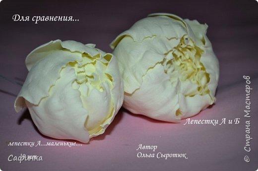 """Приветик всем,мои дорогие!!! И снова с вами я, Ольга Сыротюк... По просьбе одной читательницы моих МК...мы вместе с вами будем создавать очаровательные бутоны пиона сорта """"Ballerina""""  Согласно учению Фэн-Шуй, цветок пиона является символом удачи и любви... И так начнем...готовы творить вместе со мной? Значит за дело,достаем волшебный материал, и хорошее настроение.... фото 39"""