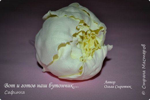 """Приветик всем,мои дорогие!!! И снова с вами я, Ольга Сыротюк... По просьбе одной читательницы моих МК...мы вместе с вами будем создавать очаровательные бутоны пиона сорта """"Ballerina""""  Согласно учению Фэн-Шуй, цветок пиона является символом удачи и любви... И так начнем...готовы творить вместе со мной? Значит за дело,достаем волшебный материал, и хорошее настроение.... фото 38"""