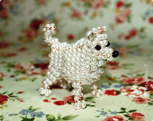447Поделки собак из всего