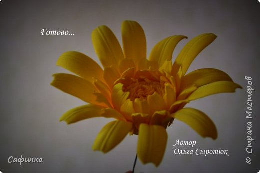"""Приветик Всем, мои дорогие!!! И снова я,, Ольга Сыротюк с Вами....Сегодня предлагаю Вашему вниманию  Мастер-класс по созданию загадочного цветка,Гербера сорта """"Гелиос"""" (желтая) Почему желтая гербера?  Гербера- цветок противоречий, он прост и в тоже время загадочен, выразителен и ярок ! Одно из значений герберы - тайна! Это хорошо подтверждает, и внешний вид цветка... Гербера сможет порадовать всех сразу и каждого по отдельности, никого не оставит без внимания!  Красные герберы-принято дарить мужчинам, Нежно розовые - девушкам,женщинам...А желтые, оранжевые принесут удачу в любой дом, их можно дарить на семейное торжество!  Поэтому творим сегодня, желтые герберы и привлекаем удачу в свой дом!!! И так вдохновились? Вооружаемся материалом и начинаем творить волшебство.... фото 34"""