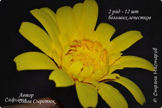 """Приветик Всем, мои дорогие!!! И снова я,, Ольга Сыротюк с Вами....Сегодня предлагаю Вашему вниманию  Мастер-класс по созданию загадочного цветка,Гербера сорта """"Гелиос"""" (желтая) Почему желтая гербера?  Гербера- цветок противоречий, он прост и в тоже время загадочен, выразителен и ярок ! Одно из значений герберы - тайна! Это хорошо подтверждает, и внешний вид цветка... Гербера сможет порадовать всех сразу и каждого по отдельности, никого не оставит без внимания!  Красные герберы-принято дарить мужчинам, Нежно розовые - девушкам,женщинам...А желтые, оранжевые принесут удачу в любой дом, их можно дарить на семейное торжество!  Поэтому творим сегодня, желтые герберы и привлекаем удачу в свой дом!!! И так вдохновились? Вооружаемся материалом и начинаем творить волшебство.... фото 35"""