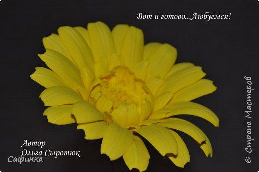 """Приветик Всем, мои дорогие!!! И снова я,, Ольга Сыротюк с Вами....Сегодня предлагаю Вашему вниманию  Мастер-класс по созданию загадочного цветка,Гербера сорта """"Гелиос"""" (желтая) Почему желтая гербера?  Гербера- цветок противоречий, он прост и в тоже время загадочен, выразителен и ярок ! Одно из значений герберы - тайна! Это хорошо подтверждает, и внешний вид цветка... Гербера сможет порадовать всех сразу и каждого по отдельности, никого не оставит без внимания!  Красные герберы-принято дарить мужчинам, Нежно розовые - девушкам,женщинам...А желтые, оранжевые принесут удачу в любой дом, их можно дарить на семейное торжество!  Поэтому творим сегодня, желтые герберы и привлекаем удачу в свой дом!!! И так вдохновились? Вооружаемся материалом и начинаем творить волшебство.... фото 37"""
