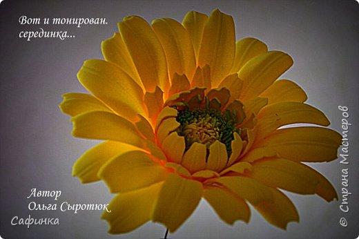 """Приветик Всем, мои дорогие!!! И снова я,, Ольга Сыротюк с Вами....Сегодня предлагаю Вашему вниманию  Мастер-класс по созданию загадочного цветка,Гербера сорта """"Гелиос"""" (желтая) Почему желтая гербера?  Гербера- цветок противоречий, он прост и в тоже время загадочен, выразителен и ярок ! Одно из значений герберы - тайна! Это хорошо подтверждает, и внешний вид цветка... Гербера сможет порадовать всех сразу и каждого по отдельности, никого не оставит без внимания!  Красные герберы-принято дарить мужчинам, Нежно розовые - девушкам,женщинам...А желтые, оранжевые принесут удачу в любой дом, их можно дарить на семейное торжество!  Поэтому творим сегодня, желтые герберы и привлекаем удачу в свой дом!!! И так вдохновились? Вооружаемся материалом и начинаем творить волшебство.... фото 47"""