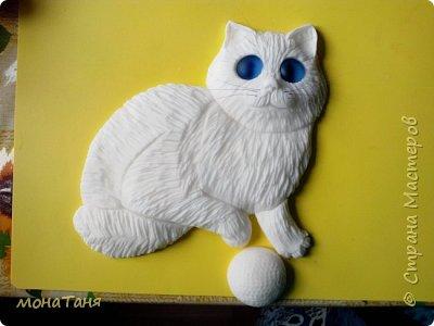 Голубоглазый котяра фото 3