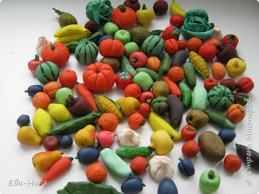 Поделка изделие Лепка Овощи и фрукты