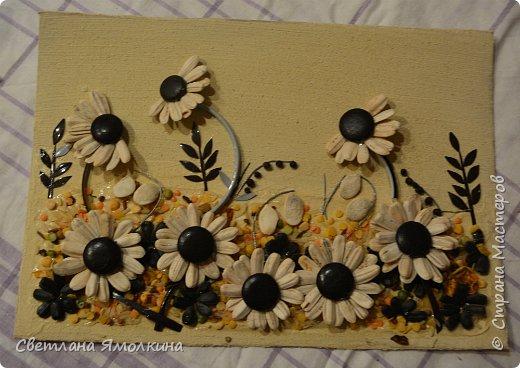 Картины из круп и семян своими руками