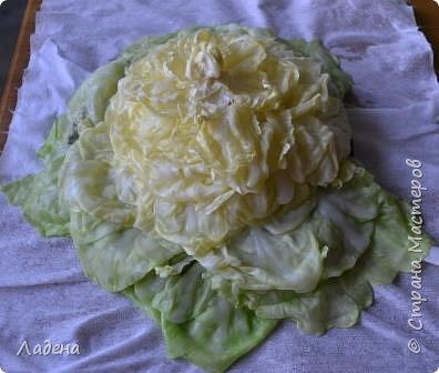 Кулинария Мастер-класс Рецепт кулинарный Капуста фаршированная Продукты пищевые фото 9