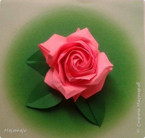 Роза от Наомики Сато. Наконец