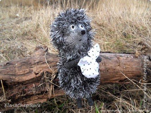 372505_hedgehog-in-the-fog Ежик крючком: схема вязания Ежика из тумана, инструкция по вязанию ежика Смешарика, примеры схем вязания зверушек для начинающих рукодельниц