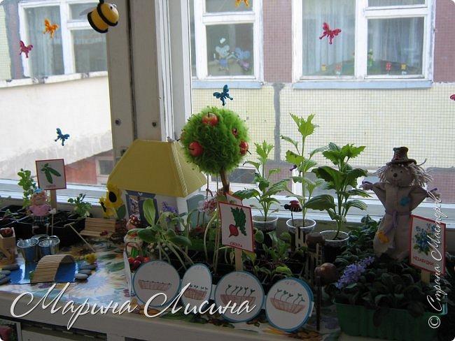 или Огород на окне -