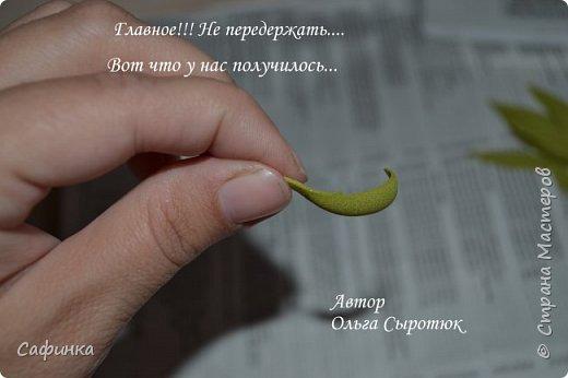 Приветик Всем, мои дорогие ...И снова с Вами, я Ольга Сыротюк...Решила создать продолжение Мк по гербере... Итак, по просьбам моих читательниц, сегодня мы с Вами будем делать стебель с листвой для герберы... В данном Мк вы узнаете... 1.Один из способов ..формирования  стебля.... 2.Научитесь Правильно обрабатывать листья.... 3.Тонировать... 4.Узнаете подробности сборки стебля с листвой герберы... 5.Выкройки шаблонов листа и подклейки прилагаются... И так, вдохновились? Есть желание по творить? Предлагаю присоединится.....  фото 11