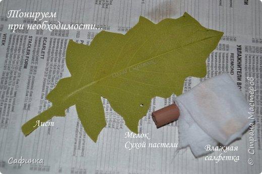 Приветик Всем, мои дорогие ...И снова с Вами, я Ольга Сыротюк...Решила создать продолжение Мк по гербере... Итак, по просьбам моих читательниц, сегодня мы с Вами будем делать стебель с листвой для герберы... В данном Мк вы узнаете... 1.Один из способов ..формирования  стебля.... 2.Научитесь Правильно обрабатывать листья.... 3.Тонировать... 4.Узнаете подробности сборки стебля с листвой герберы... 5.Выкройки шаблонов листа и подклейки прилагаются... И так, вдохновились? Есть желание по творить? Предлагаю присоединится.....  фото 19