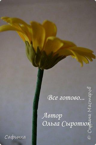 Приветик Всем, мои дорогие ...И снова с Вами, я Ольга Сыротюк...Решила создать продолжение Мк по гербере... Итак, по просьбам моих читательниц, сегодня мы с Вами будем делать стебель с листвой для герберы... В данном Мк вы узнаете... 1.Один из способов ..формирования  стебля.... 2.Научитесь Правильно обрабатывать листья.... 3.Тонировать... 4.Узнаете подробности сборки стебля с листвой герберы... 5.Выкройки шаблонов листа и подклейки прилагаются... И так, вдохновились? Есть желание по творить? Предлагаю присоединится.....  фото 36