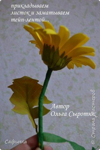 Приветик Всем, мои дорогие ...И снова с Вами, я Ольга Сыротюк...Решила создать продолжение Мк по гербере... Итак, по просьбам моих читательниц, сегодня мы с Вами будем делать стебель с листвой для герберы... В данном Мк вы узнаете... 1.Один из способов ..формирования  стебля.... 2.Научитесь Правильно обрабатывать листья.... 3.Тонировать... 4.Узнаете подробности сборки стебля с листвой герберы... 5.Выкройки шаблонов листа и подклейки прилагаются... И так, вдохновились? Есть желание по творить? Предлагаю присоединится.....  фото 37