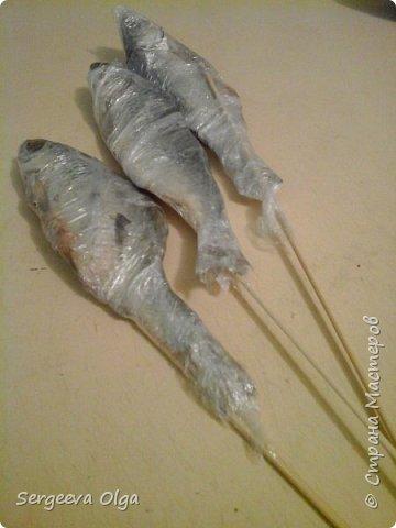 Здравствуйте, уважаемые Мастера и Мастерицы! Увидела в Интернете букет из сушеной рыбы как вариант подарка для мужчины, решила сделать, а заодно поделиться процессом изготовления. фото 4