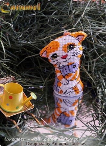 С 2007 года я вышиваю крестиком игрушки. Вначале это были просто двухстороннние игрушки, потом я придумала как добавить к ним устойчивое донышко. С тех пор каждый год делаю минимум по 1 игрушке в год, поскольку основная серия у меня это символы Восточного Гороскопа. Но иногда делаю и не только символы-животных. Однажды, к примеру, я сделала вот такую милую Снегурочку. Схемы разрабатываю сама. фото 13