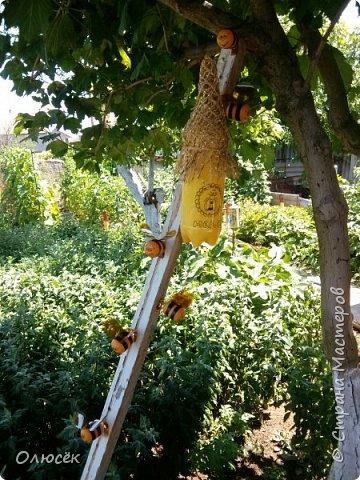 Такой улик и рой пчел сделали с мужем доченьке в садик для площадки еще в прошлом году.  Улик - это двухлитровый пак от сока, обернутый золотистой подарочной бумагой. Крыша - сетка от букета цветов (как правильно называется- не знаю). Пчелки - желтки от киндеров, полоски -черная изолента, крылышки - из пластиковых бутылок. Раскрашено перманентным маркером. фото 8