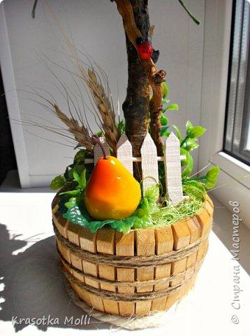 фруктовое) фото 2