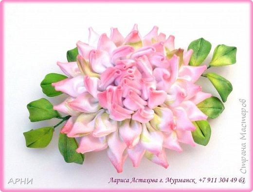 Сделала Астру по МК Натальи Борджаковой.  фото 3