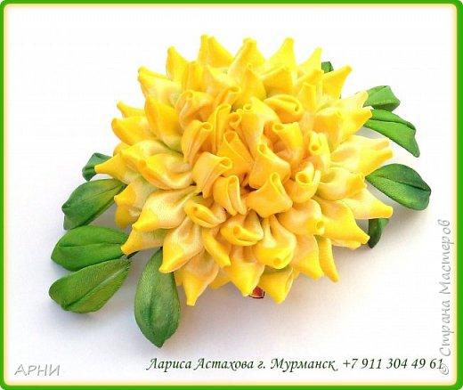 Сделала Астру по МК Натальи Борджаковой.  фото 2