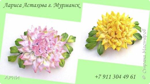 Сделала Астру по МК Натальи Борджаковой.  фото 1