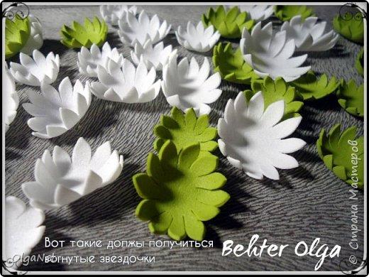 Мастер-класс Моделирование конструирование МК Броши Белый клевер из фоамирана Фоамиран фом фото 10