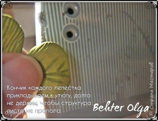 Мастер-класс Моделирование конструирование МК Броши Белый клевер из фоамирана Фоамиран фом фото 17
