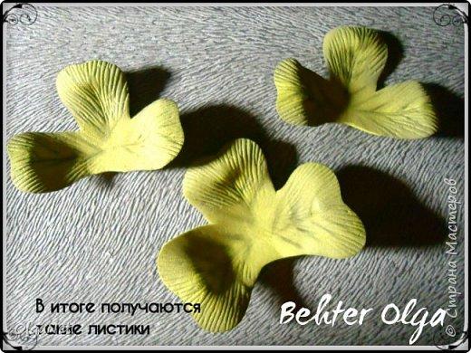 Мастер-класс Моделирование конструирование МК Броши Белый клевер из фоамирана Фоамиран фом фото 19