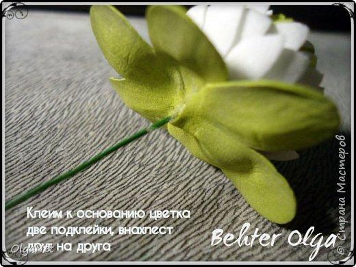 Мастер-класс Моделирование конструирование МК Броши Белый клевер из фоамирана Фоамиран фом фото 29