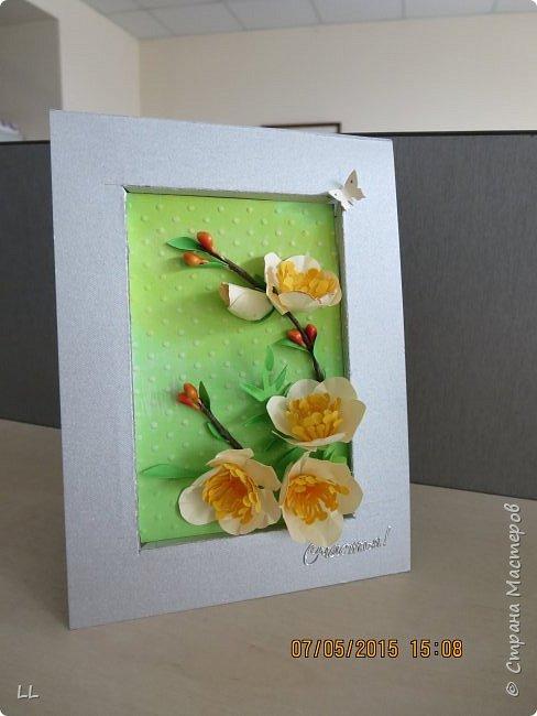 разные открытки фото 9